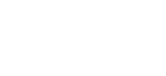 Washington Univeristy Logo